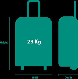 vente chaude en ligne e158a 7b225 Aer Lingus Bagage Cabine Sac A Main - Janet L. Thelen Blog